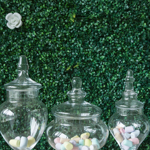 "Set of 3 Glass Apothecary Candy Jars With Lids - 10""/12""/14"""