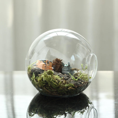 3 Pack | Modish Round Glass Wall Vase | Hanging Glass Terrarium | Indoor Wall Planters