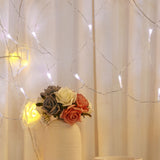 40 x 40 INAUGURATION CEREMONY Fairy Lights LED White