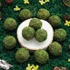 "12 Pack | 2"" Handmade Preserved Natural Moss Balls With Golden Twine"