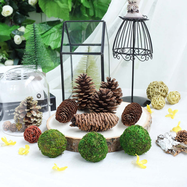 Pack of 9 Natural Pine Cones and Moss Balls Assorted Potpourri Vase Fillers Bowl DIY Table Decorations