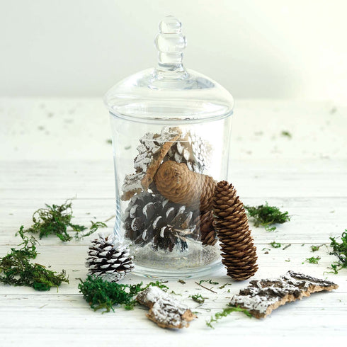 9 Pack Natural Pine Cones and Barks Assorted Potpourri Vase Fillers Bowl DIY Table Decorations