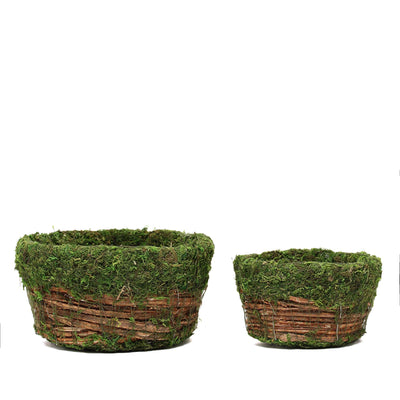 Set of 2 - Natural Cedar Twig Round Preserved Moss Planter Box