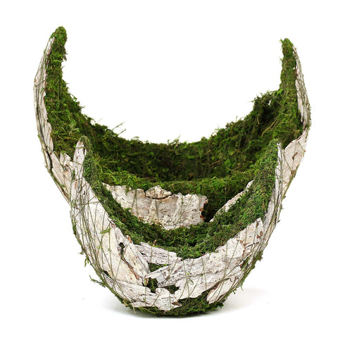 "Set of 2 | Natural White Bark Preserved Moss Planter Box with Twine - 9"" & 13"""