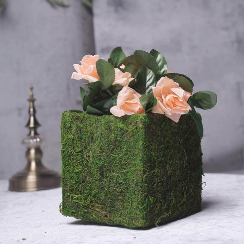 "4 Pack - Square Preserved Moss Planter Boxes - Moss Covered Flower Basket Planter with Inner Lining  - 6"" x 6"""