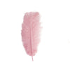 "12 Pack | 13""-15"" Pink Natural Plume Ostrich Feathers Centerpiece"
