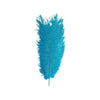 "Pack of 12 - 13""-15"" Turquoise Natural Plume Ostrich Feathers Centerpiece"