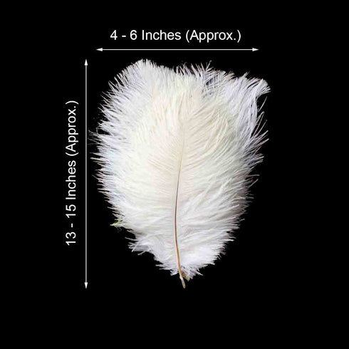 "Pack of 12 - 13""-15"" White Natural Plume Ostrich Feathers Centerpiece"