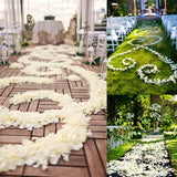 500 Silk Rose Petals For Wedding Party Table Confetti Decoration - White( Sold Out )