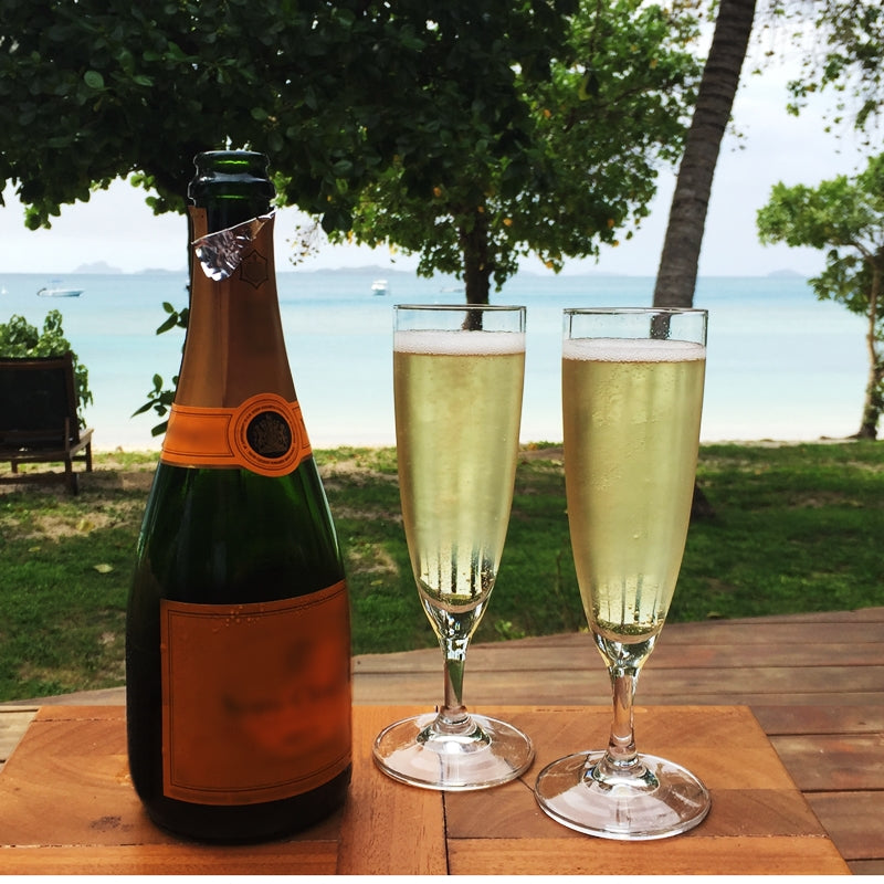 12 Plastic Champagne Toasting Glasses Disposable Party Wedding Anniversary Event