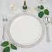 Plastic Dinner Plates with Silver Lace Design Rim, Plastic Dinnerware