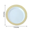 Plastic Dinner Plates, Party Plates, Plastic Dinnerware