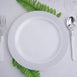 "10 Pack 9"" White Plastic Disposable Round Dinner Plates with Silver Striped Rim"