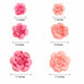 Pack of 6 - Pink & Fushia Assorted Size Paper Peony Flowers - 7"