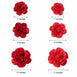 Pack of 6 - Red & Wine Assorted Size Paper Peony Flowers - 7"