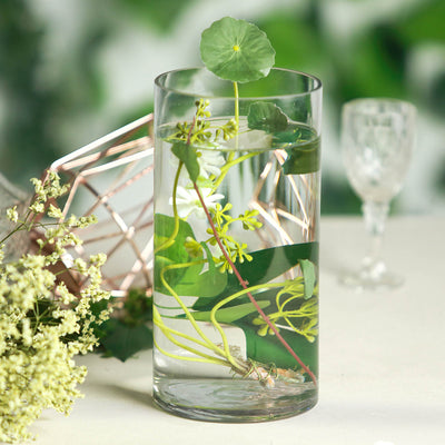 "12 Pack | 10"" Heavy Duty Cylinder Glass Vase"