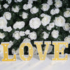 "6"" Gold 3D Marquee Letters - Warm White 7 LED Light Up Letters - M"