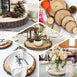 "7"" Dia - Rustic Natural Wood Slices, Round Poplar Wood Slabs, Table Centerpieces"
