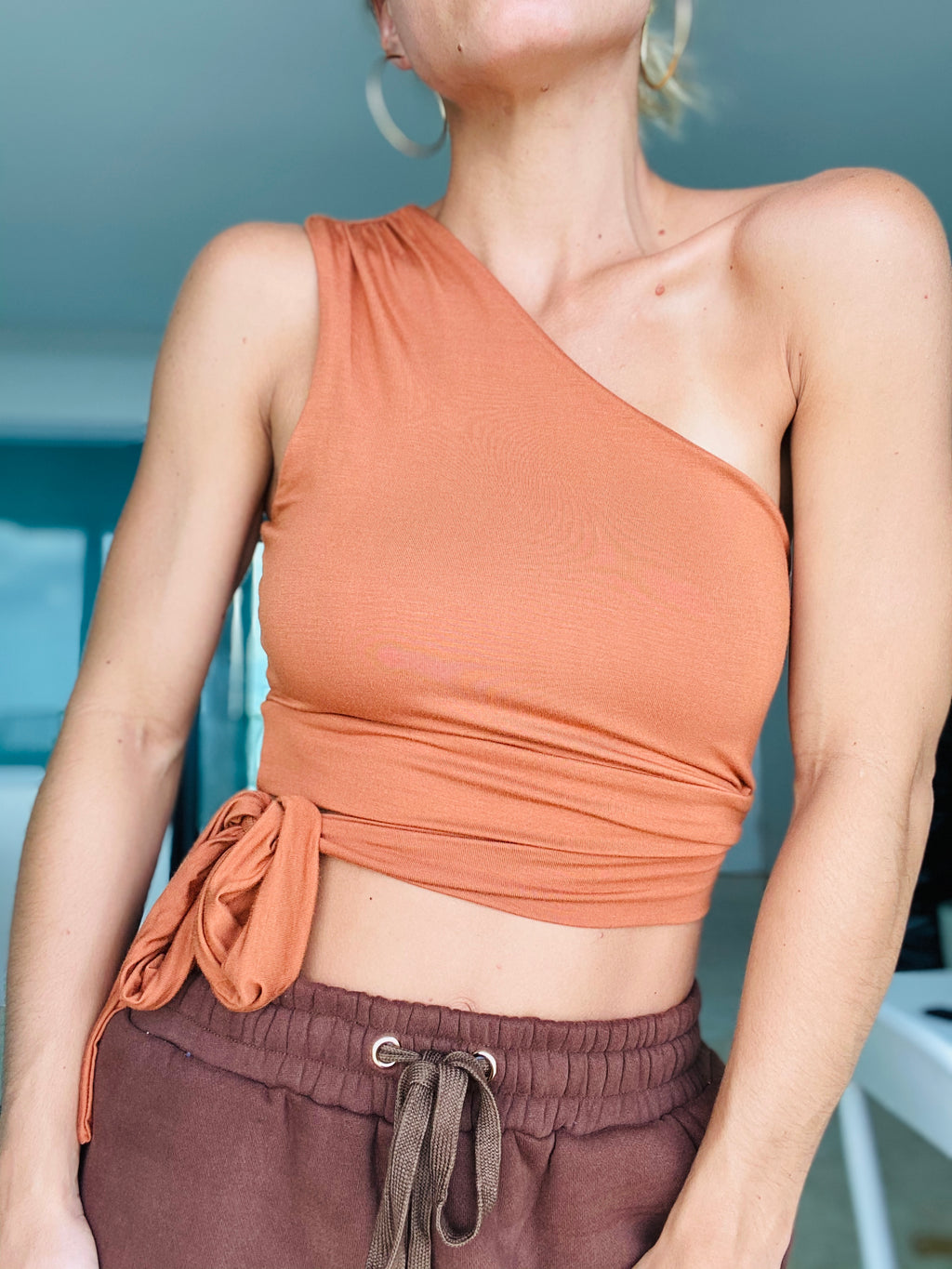 Deep Spice One Shoulder Crop