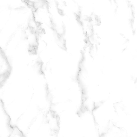 Carrara 24 x 24 Ceramic Tile