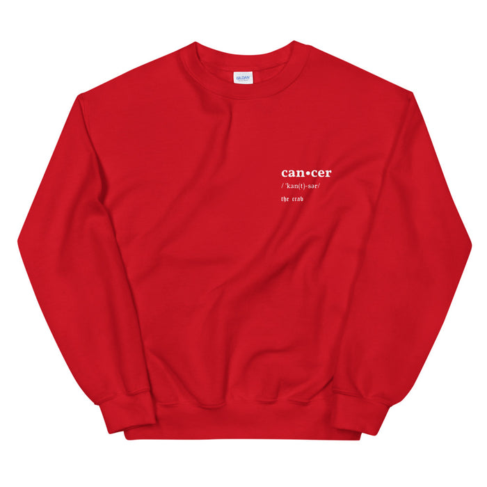 Cancer V-Day Pullover