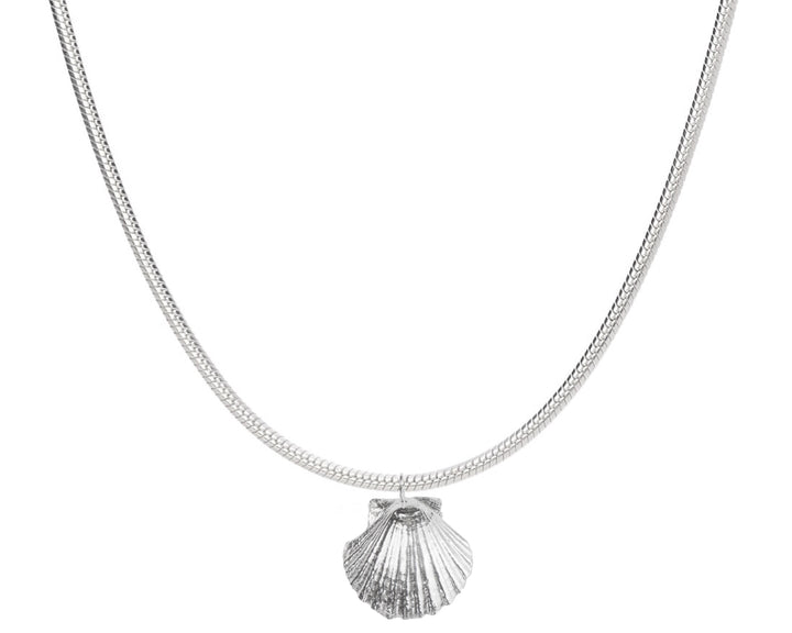 Seashell Necklace, Necklaces, saltandco