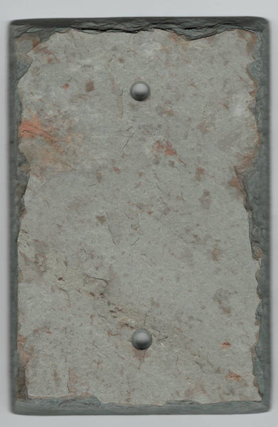 Protective Blank Wall Plate