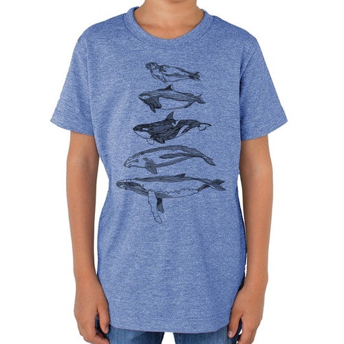 Salish Sea Mammals - Kids triblend t-shirt (Light blue) Shirt Kate
