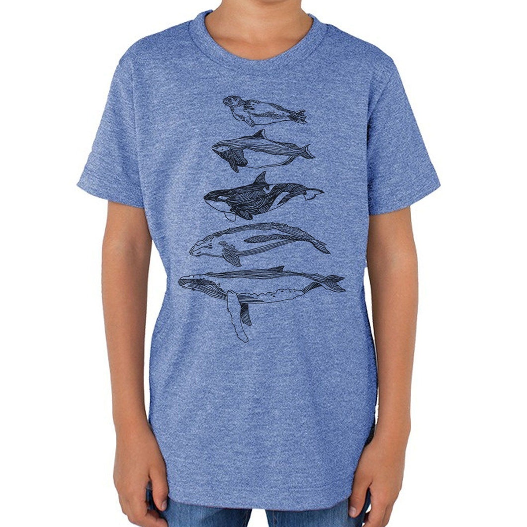 Salish Sea Mammals - Youth Triblend Track T-shirt (Light blue) Kids Kate