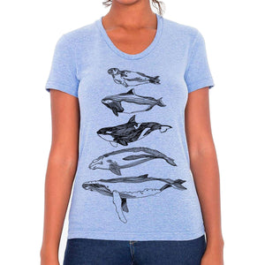 Salish Sea Mammals - Womens triblend t-shirt (L. blue) Shirt Kate