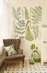 Athyrium Wall Mural - Window Film World