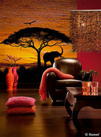 African Sunset Wall Mural - Window Film World