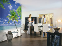 Ari Atoll Wall Mural - Window Film World