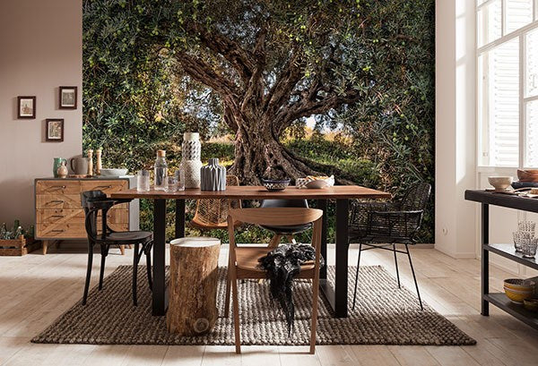 Olive Tree Wall Mural - Window Film World
