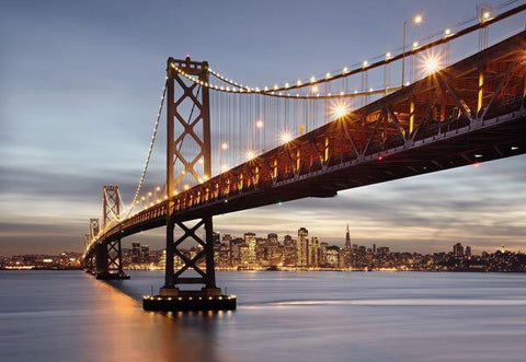 Bay Bridge Wall Mural - Window Film World