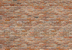 Brick Wall Wall Mural - Window Film World
