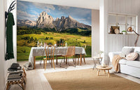 Alpen Mural - Window Film World