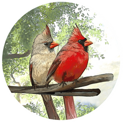 Cardinal Screen Door Magnets (5.75