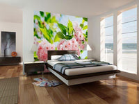 Sakura Blossom Wall Mural - Window Film World