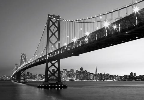 San Francisco Skyline Wall Mural - Window Film World