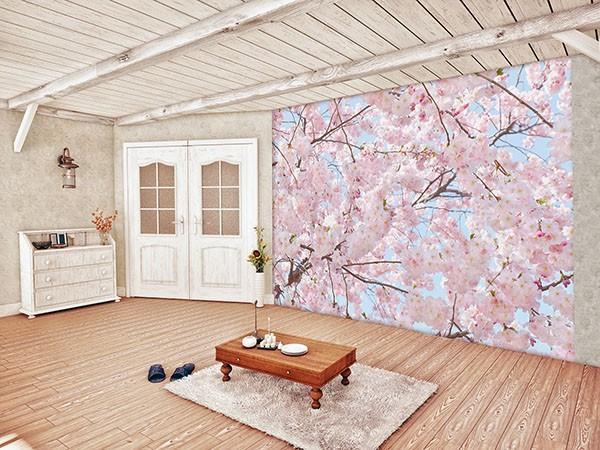 Pink Blossoms Wall Mural - Window Film World