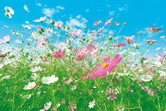 Flower Meadow Wall Mural - Window Film World