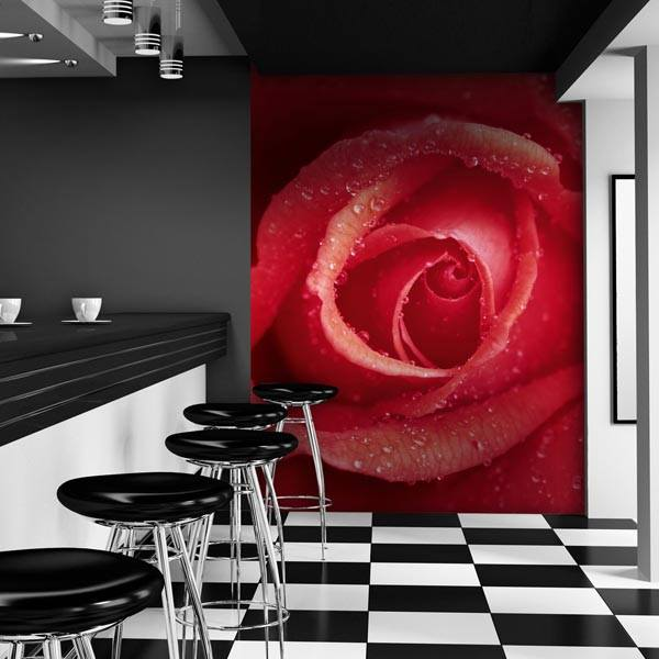 Rose Wall Mural - Window Film World