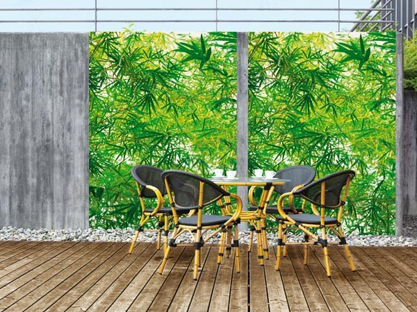 Bamboo Wall Mural - Window Film World