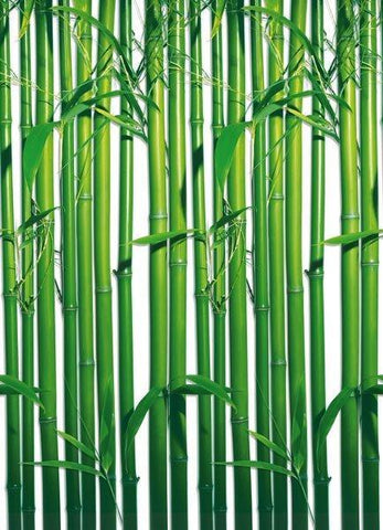 Bamboo Repeatable Wall Mural - Window Film World