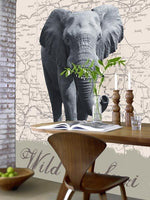 Wild Safari Wall Mural - Window Film World