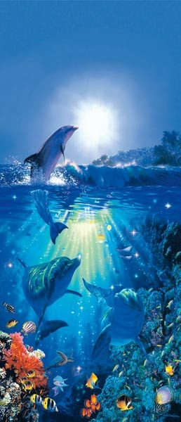 Dolphin In The Sun Wall Mural - Window Film World