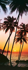 Sunny Palms Wall Mural - Window Film World