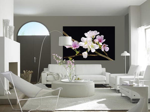 Cherry Blossoms Wall Mural - Window Film World