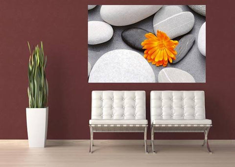 A Heart Among Stones Wall Mural - Window Film World